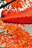 Una combinazione di prefetto: lo spirito del Giappone e della natura Fotografia Stock Libera da Diritti