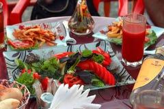 Una comida campestre en el aire fresco, tabla festiva, verduras, alcohol, m Fotografía de archivo libre de regalías