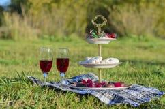 Una comida campestre romántica en el campo Fotos de archivo