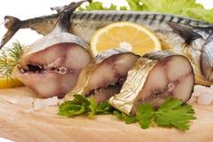 Una composición con los pescados de la caballa Fotos de archivo