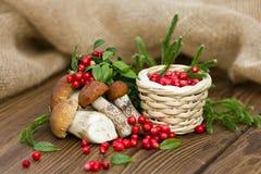 Una composición hermosa, bayas frescas del bosque en la cesta y setas comestibles Fotos de archivo libres de regalías