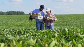 Una comunicazione di due agricoltori nel campo stock footage