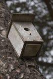 Una construcción para los pájaros en Niza, Francia Foto de archivo