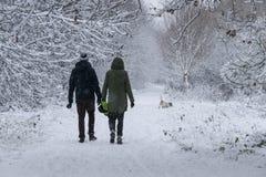 Una coppia che cammina il loro cane nella foresta in un giorno delle precipitazioni nevose pesanti Fotografia Stock Libera da Diritti