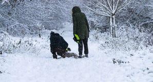 Una coppia che cammina il loro cane nella foresta in un giorno delle precipitazioni nevose pesanti Fotografie Stock