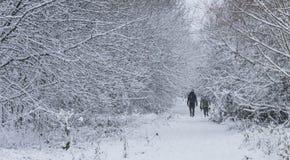 Una coppia che cammina nella foresta in un giorno delle precipitazioni nevose pesanti Immagini Stock
