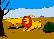 Una coppia di leoni nella savana Illustrazione Vettoriale