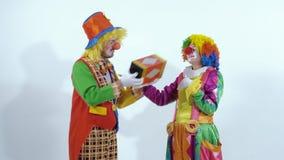 Una coppia di pagliacci di circo che giocano con poca scatola contro il fondo bianco stock footage