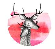 Una coppia i cervi su un fondo dell'acquerello Fotografia Stock Libera da Diritti