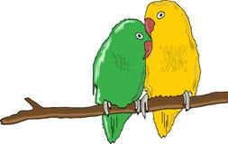 Una coppia i pappagalli Fotografia Stock Libera da Diritti