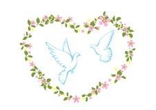 Una coppia le colombe Fotografia Stock Libera da Diritti