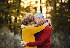 Una coppia senior che sta in una natura di autunno al tramonto, abbracciante immagini stock libere da diritti