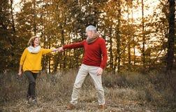 Una coppia senior su una passeggiata in una natura di autunno al tramonto, tenentesi per mano fotografia stock
