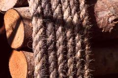 Una corda spessa ha legato i ceppi di legno immagine stock libera da diritti