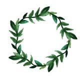 Una corona rotonda delle foglie verdi e dei ramoscelli Disegnato a mano in acquerello su un fondo bianco isolato Cartolina, festa illustrazione di stock