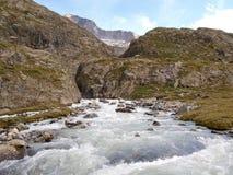 Una corrente alpina dell'acqua della montagna nella montagna della Svizzera, Unterstock, Urbachtal Immagini Stock