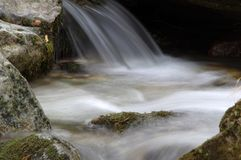 Una corrente andrefreshing vistosa della foresta Fotografia Stock
