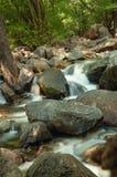 Una corrente cade in rovina attraverso le rocce in una foresta fotografia stock