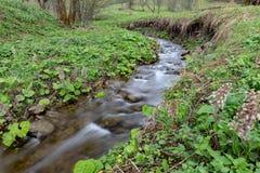 Una corrente veloce in terreno montagnoso Acqua che entra nel fiume indicato in un'esposizione lunga fotografie stock libere da diritti
