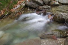 Una corriente andrefreshing llamativa del bosque foto de archivo