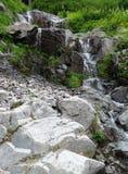 Una corriente conecta en cascada en el rastro de Hannegan en Washington Imagen de archivo