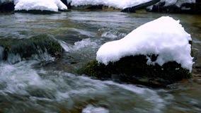 Una corriente cristalina hermosa en invierno con nieve atraviesa el bosque almacen de video