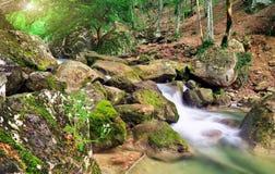 Una corriente del agua en bosque y mounta Foto de archivo