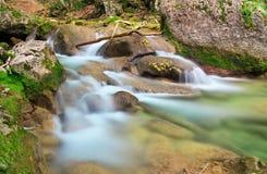 Una corriente del agua en bosque y terreno de la montaña Fotos de archivo