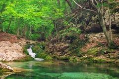 Una corriente del agua en bosque y terreno de la montaña. Imagen de archivo