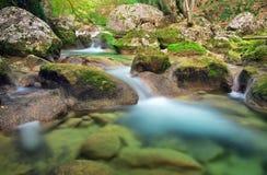 Una corriente del agua en bosque y terreno de la montaña Imagen de archivo libre de regalías