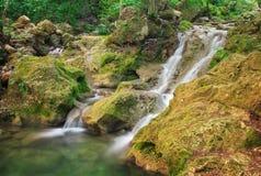 Una corriente del agua en bosque y terreno de la montaña Fotos de archivo libres de regalías