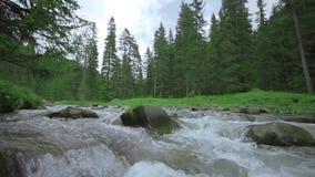 Una corriente en la cámara lenta con los cantos rodados en la naturaleza media y verde detrás metrajes
