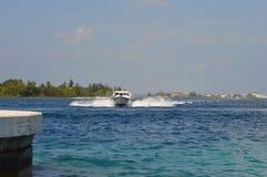 Una corsa di barca di velocità verso la riva Immagini Stock Libere da Diritti