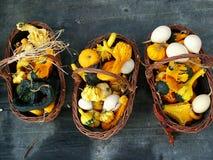 Una cosecha de calabazas y de calabazas Fotografía de archivo