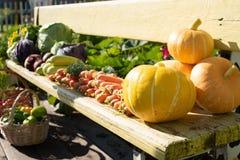 Una cosecha de verduras frescas miente en un banco en el aire abierto fotografía de archivo libre de regalías
