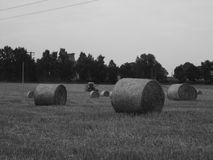 Una cosechadora, la cosecha, la paja, la agricultura Foto de archivo