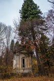 Una cripta spettrale stagionata in autunno tardo della foresta immagine stock libera da diritti
