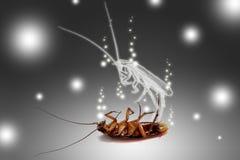 Una cucaracha muerta Stock de ilustración