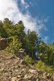 Una cuesta de una montaña Fotos de archivo