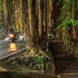Una de las calles en el centro de Ubud Foto de archivo
