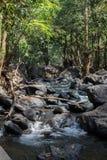 Una de las cascadas hermosas en el verano de la naturaleza del bosque el más hermoso Imágenes de archivo libres de regalías