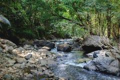 Una de las cascadas hermosas en el verano de la naturaleza del bosque el más hermoso Fotos de archivo libres de regalías
