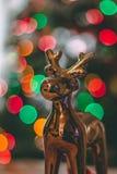 Una decoración de oro de la Navidad del reno Fotografía de archivo