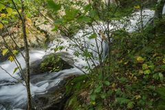Una delle molte cascate dalla traccia di cadute di Crabtree - 2 fotografie stock libere da diritti