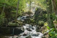 Una delle molte cascate magiche dalla traccia di cadute di Crabtree immagini stock libere da diritti