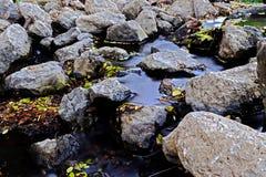Una diga e un'acqua della pietra del campione Fotografia Stock