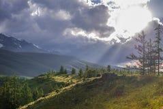 Una disminución en montañas Altai, Rusia Imagen de archivo