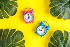 Una disposizione piana di due astratti variopinti delle foglie e delle sveglie isolati su giallo immagine stock libera da diritti