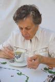 Una donna anziana sta prendendo una tazza di tè Fotografia Stock