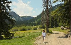 Una donna cammina una strada sulla strada secondaria remota del ciclo alpino Immagini Stock Libere da Diritti